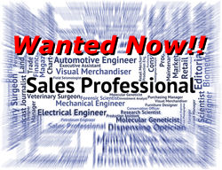 Basictech sales professional wanted now